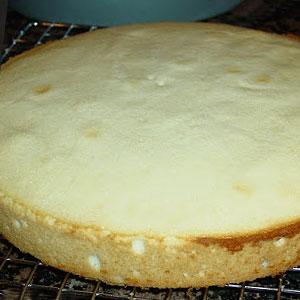 Рецепт бисквитных коржей в домашних условиях фото