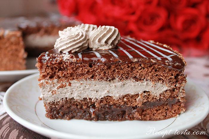 Шоколадный торт с черносливом и сливочным кремом в разрезе