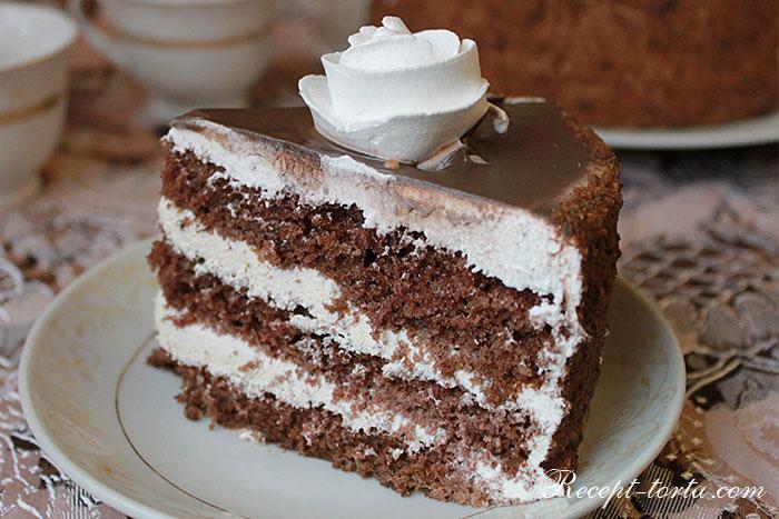 Вкусный шоколадно-бисквитный торт в вразрезе