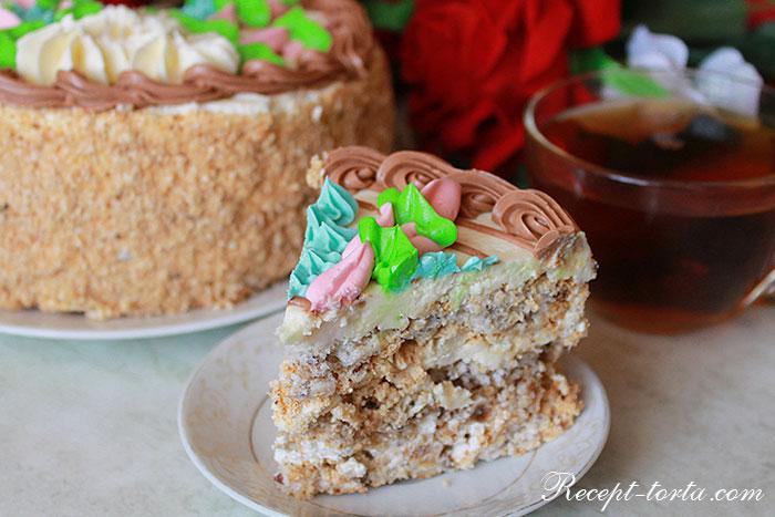Классический Киевский торт в разрезе