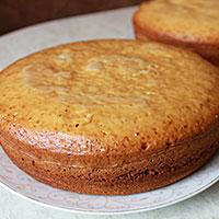 Выпечка медовых коврижек для торта - фото