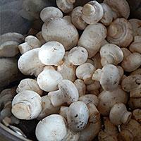 Подготавливаем грибы для основы и украшения - фото