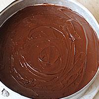 Покроем шоколадом Птичку - фото